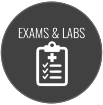 Exams & Labs